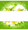 Flowers With Leaves Bokeh And Sunburst vector image vector image