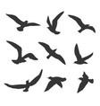 flying birds silhouette set vector image