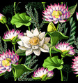print for t-shirt or poster with waterlily vector image vector image