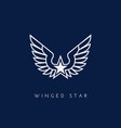 winged star vector image vector image