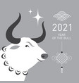 year ox vector image vector image