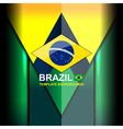 brazil color backgrounds design vector image