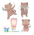 cute cartoon cat morning routine vector image