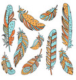 decorative set of feathers in ethnic style vector image