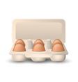 eggs in cardboard package vector image