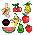 fruits stickers embroidery vector image vector image
