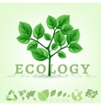 ecology world infographics vector image