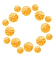 Abstract Round Frame with Sliced Oranges vector image
