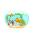 Aquarium fish seaweed underwater marine animal vector image vector image