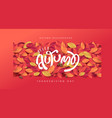 autumn leaves backgroundthanksgiving day autumn vector image
