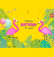 birthday card congratulation template vector image vector image
