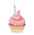 Birthday Cupcake vector image vector image
