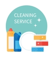 Cleaning supplies and household equipment tools vector image vector image