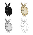gray rabbitanimals single icon in cartoon style vector image