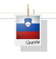 photo of slovenia flag vector image vector image