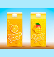 set of two juice tetra packs with different tastes vector image vector image
