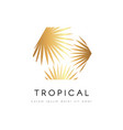 tropical exotic emblem golden palm tree leaves vector image vector image