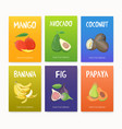 collection of bright colored cards with delicious vector image