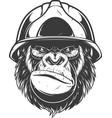 gorilla in building helmet vector image vector image