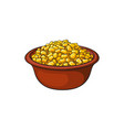 hand drawn bowl of canned tinned sweet corn vector image