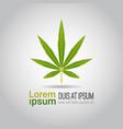 medical marijuana leaf cbd oil label thc free icon vector image