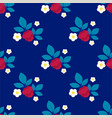 raspberry seamless pattern on vector image