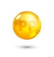 Vitamin PP glitter gold icon vector image vector image