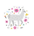 lovely lama drawing vector image