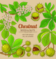 chestnut plant frame on color background vector image vector image