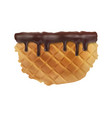 delicious waffles in chocolate sauce reali vector image vector image