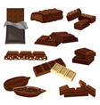 flat set of chocolate products candies vector image