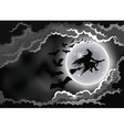 Halloween Wicked Witch Silhouette Background vector image