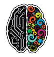 human brain background vector image vector image