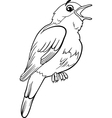 nightingale bird coloring page vector image