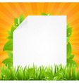 Paper With Beams And Grass vector image vector image