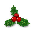 realistic hand drawn holly ilex branch with berry vector image vector image