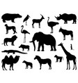set silhouette standing african animals vector image