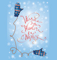 greeting merry christmas and happy new year card vector image