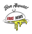 fake news concept vector image vector image