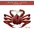 King Crab Marine Food vector image vector image