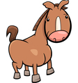 little horse or foal cartoon vector image vector image