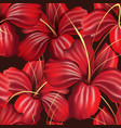 red orchid seamless pattern vector image