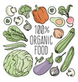 vegetables nutrition paleo natural diet vector image vector image
