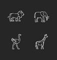 african wildlife chalk white icons set on black vector image