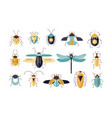 bundle of different colorful geometric insects vector image