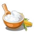 Corn porridge with cob in wooden dish vector image vector image