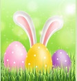 easter colorful eggs on green grass background vector image