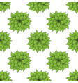 green bush set vector image