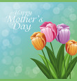happy mothers day greeting card beautiful flowers vector image