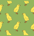 little chicken seamless pattern vector image vector image